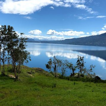 Lago Panguipulli: ¡Increíbles terrenos a la venta!